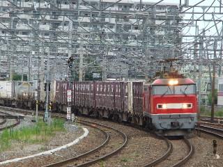 Dscf5449