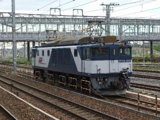 Dscf5499