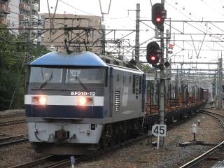Dscf7295