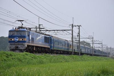 Dsc_0650