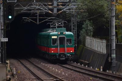 Dsc_1101